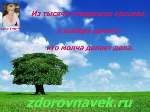 Мудрость, цитаты