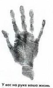 линии на руке, генетики