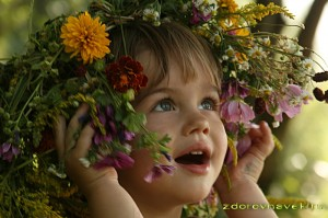 счастье в жизни человека, многие не так счастливы как могли бы быть, жизненные позиции человека, счастливым быть не сложно