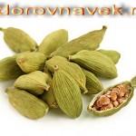 специи и пряности, горчичное зерно, кардамон, кардамон полезные свойства, применение кардамона, кумин