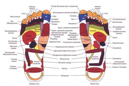 состояние ног, стопы,  диагностика ног, рефлекторные зоны, заболевания стоп