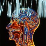 работа с интернетом, воздействие на мозг, ученые  установили, новости науки