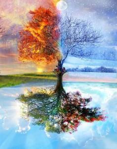 бабочки однодневки, прошлые жизни, реинкарнация, перевоплощение душ, Е.П. Блаватская, Е.И. Рерих, Н.К. Рерих, Шамбала, учение Индии