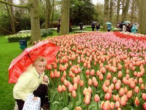 кекенхоф парк, Keukenhof - Holland, Кёкенхоф, цветочный парк , Голландия смотреть, страна цветов, голландия видео